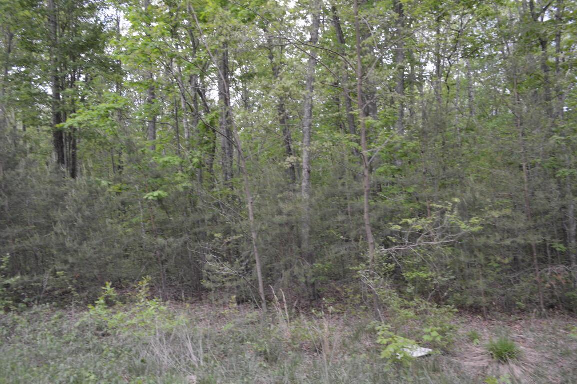 100 Forest Knoll Rd 06, Dunlap, TN 37327