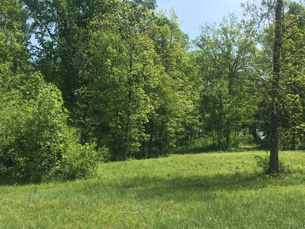 Lot 6 Ne Keystone Dr, Cleveland, TN 37312