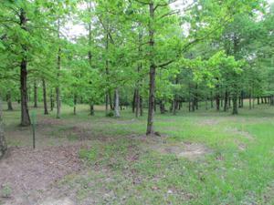 3 Three Forks Rd, South Pittsburg, TN 37380
