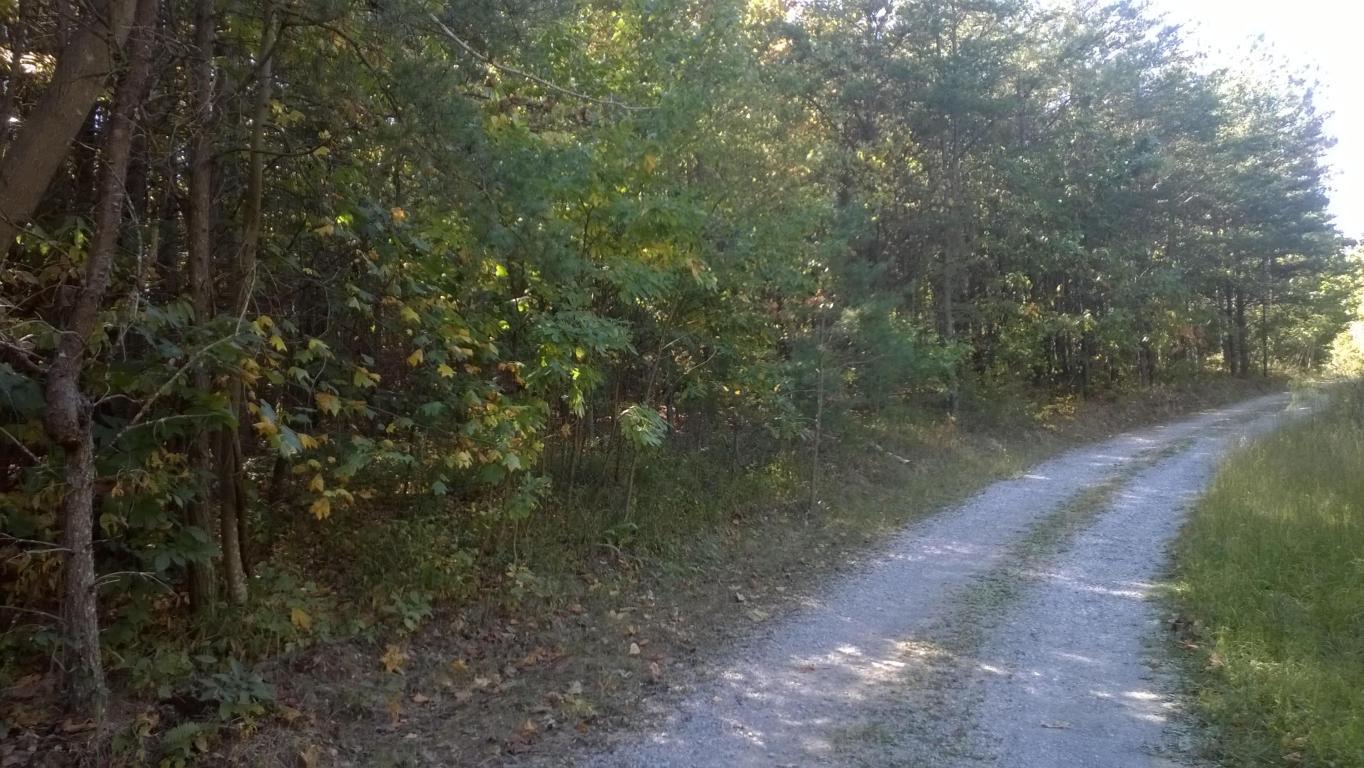 760 Payne Cove Dr, South Pittsburg, TN 37380