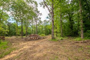 3560 Wilson Ave, Signal Mountain, TN 37377