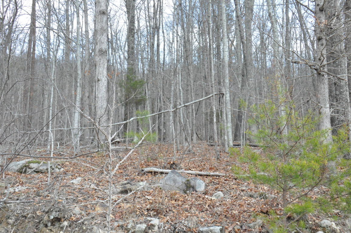 Lot 10 Raulstontown Rd 10, South Pittsburg, TN 37380