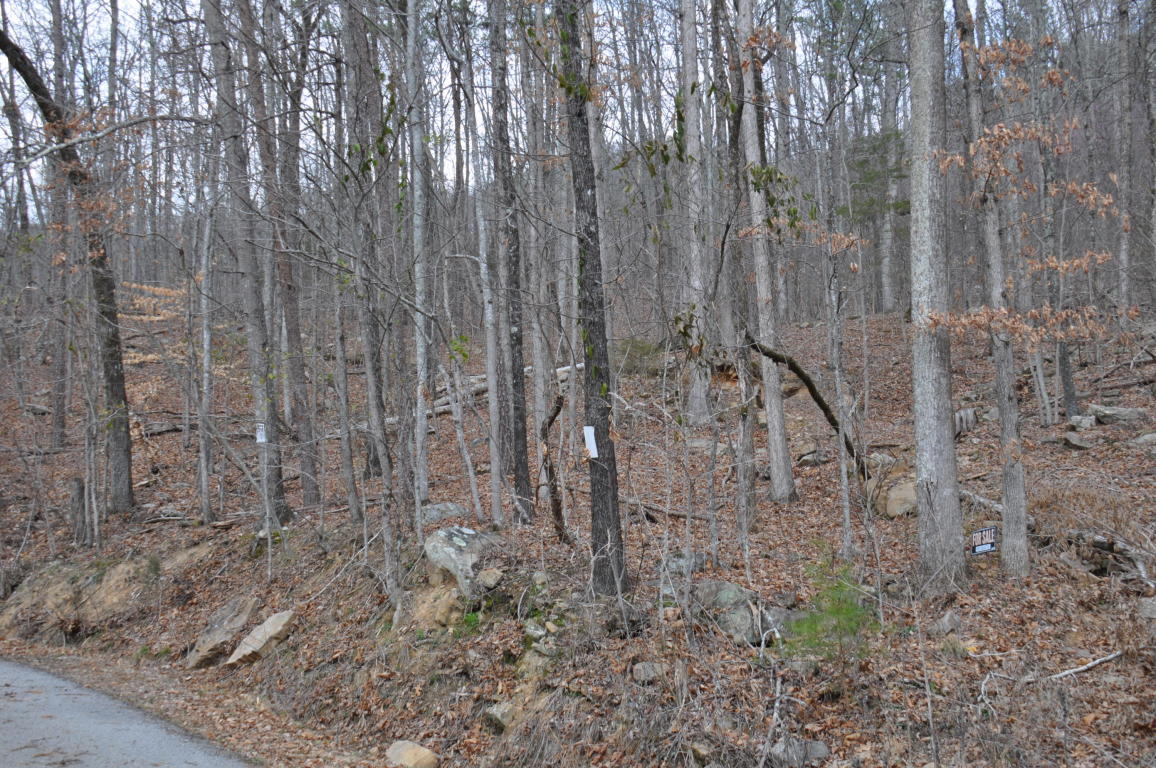 Lot 11 Raulstontown Rd 11, South Pittsburg, TN 37380