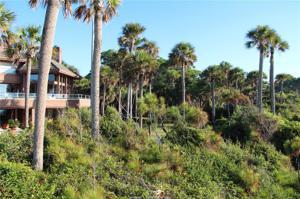 19 Red Cardinal Road, Hilton Head Island, SC 29928