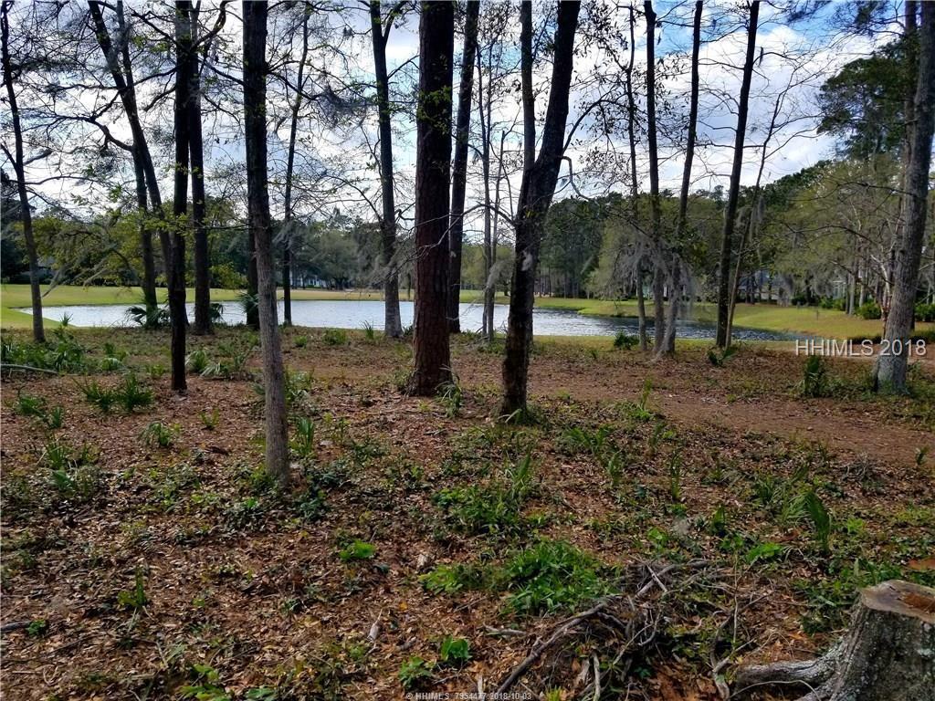4 Lawsons Pond Court, Bluffton, SC 29910
