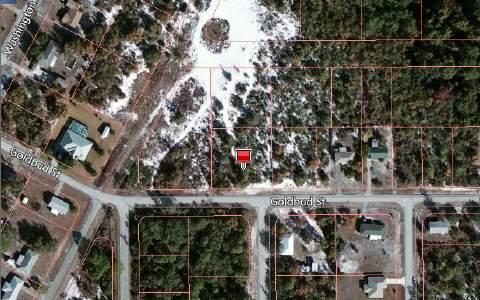 1414 Goldbud St, Lake Placid, FL 33852