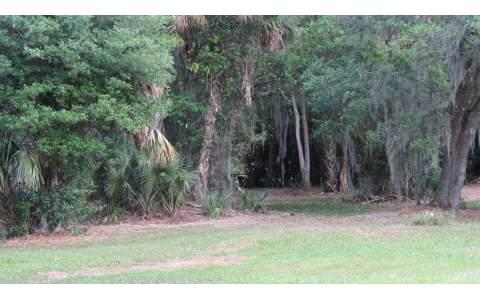 3199 White Oak Rd, Lorida, FL 33857