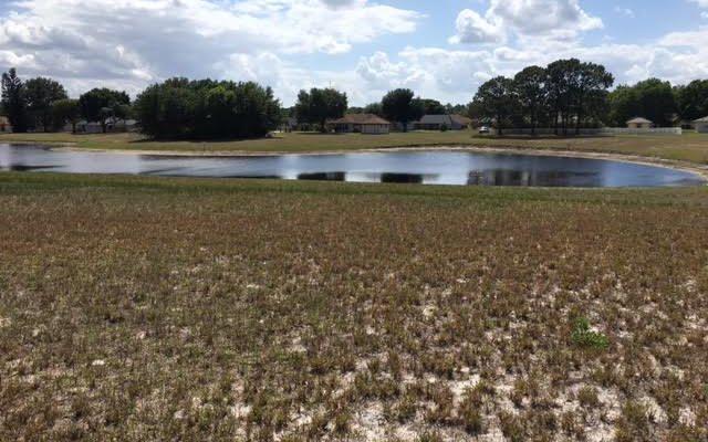11 Fawn Run Rd, Lake Placid, FL 33852