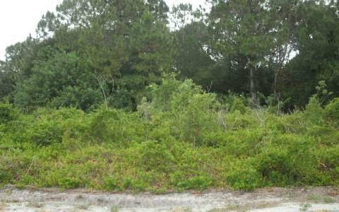 116 Woodmere Ave Ne, Lake Placid, FL 33852