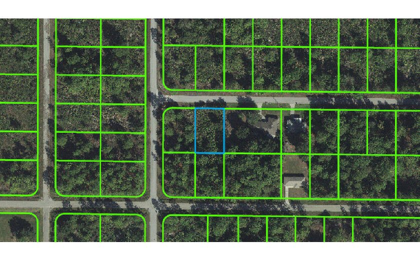 116 Conquest St Nw, Lake Placid, FL 33852