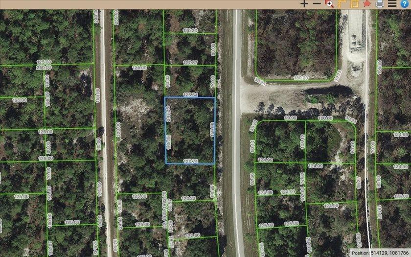 656 Wildflower St, Lake Placid, FL 33852