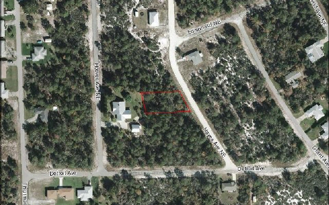 229 Hayes Ave Ne, Lake Placid, FL 33852