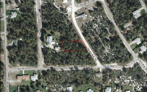 231 Hayes Ave Ne, Lake Placid, FL 33852