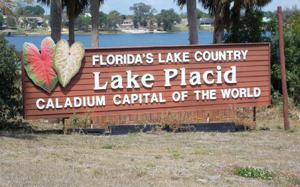 1555 Spring Ln, Lake Placid, FL 33852