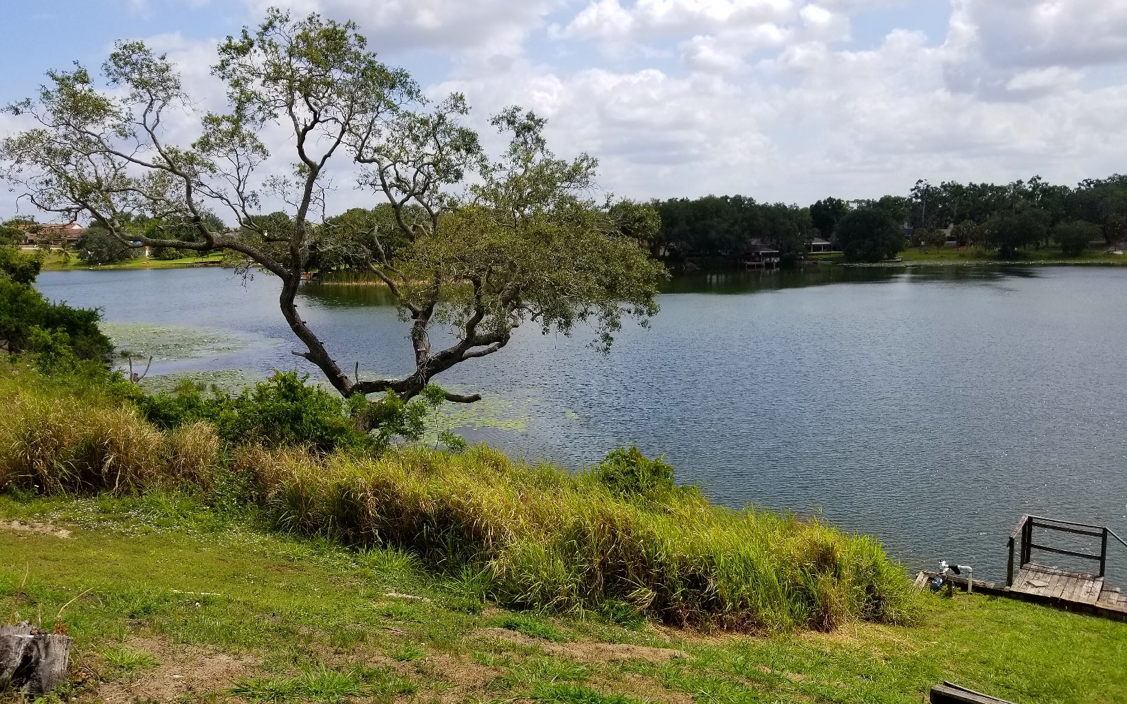 511 Lake Saddlebags Dr, Lake Placid, FL 33852