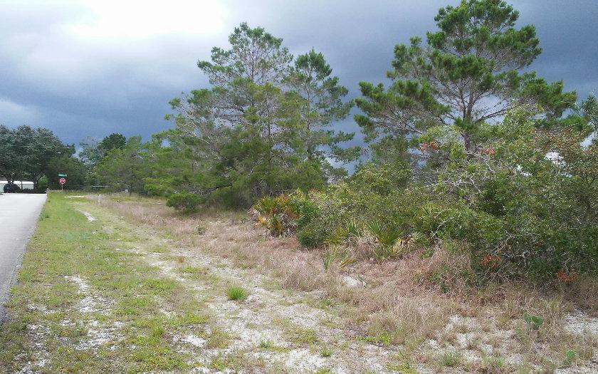309 Grenada St Ne, Lake Placid, FL 33852