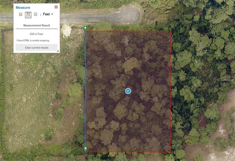 15300 Mill Pond Rd, Tavares, FL 32778