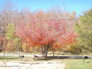 1515 Onoko Path, Pocono Lake, PA 18347