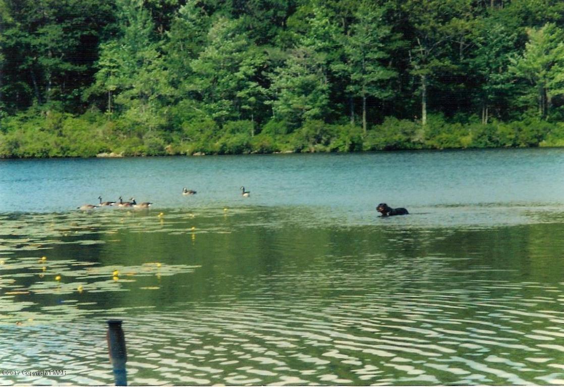 1663 W Mountain Lake Dr, Bear Creek, PA 18702