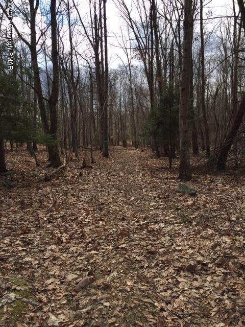1103 Upper Seese Hill Rd, Canadensis, PA 18325