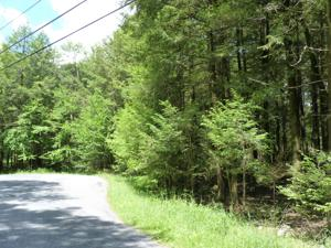Lot 52 King Arthur, Pocono Lake, PA 18610