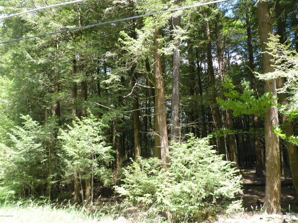 Lot 172 Sir Gawain, Blakeslee, PA 18610