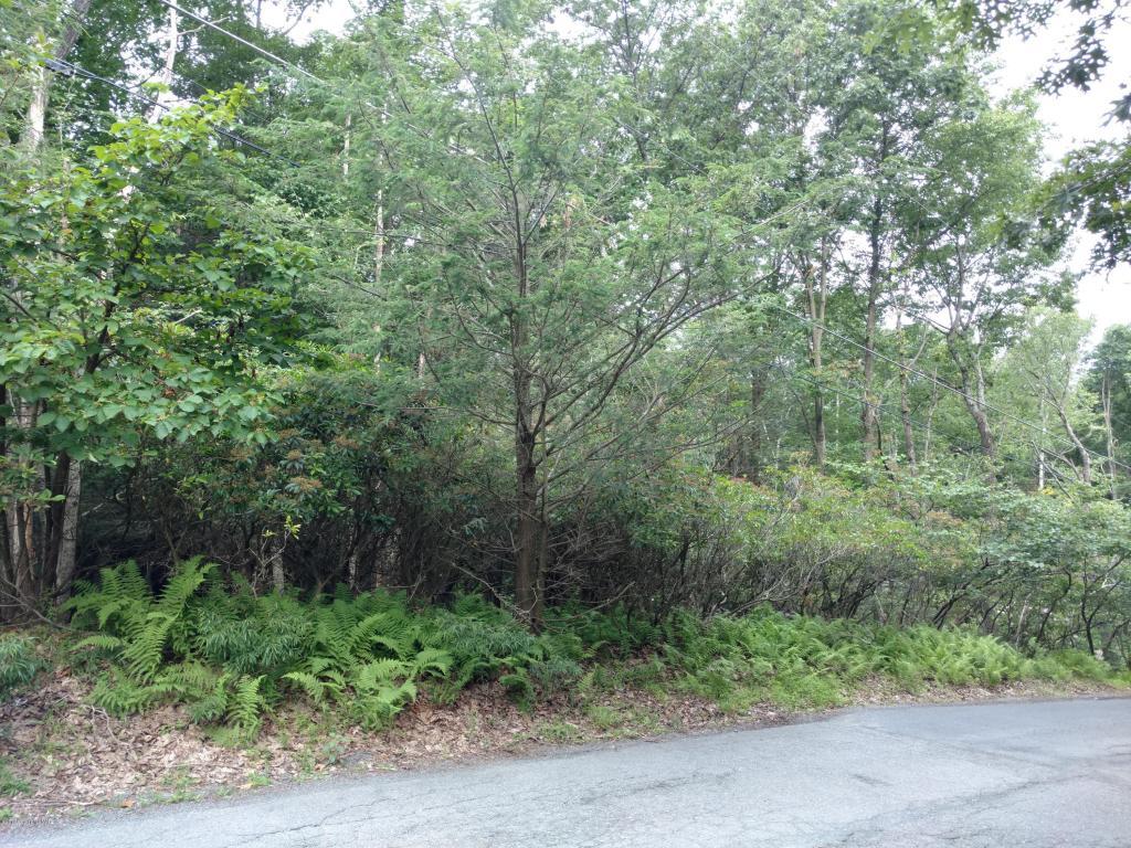 404 Pine Tree Drive, Swiftwater, PA 18370