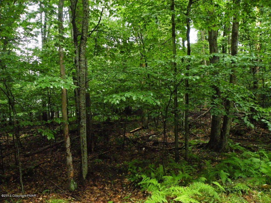811 Maple Dr, Pocono Lake, PA 18347