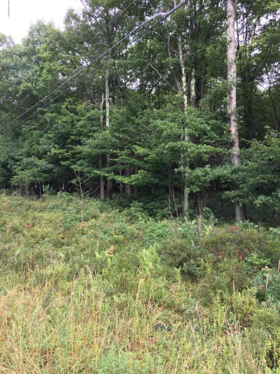 Lot 36 Deep Lake Rd And Shannon Dr., Long Pond, PA 18334