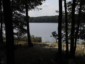 69 E Lake Drive East, Gouldsboro, PA 18424