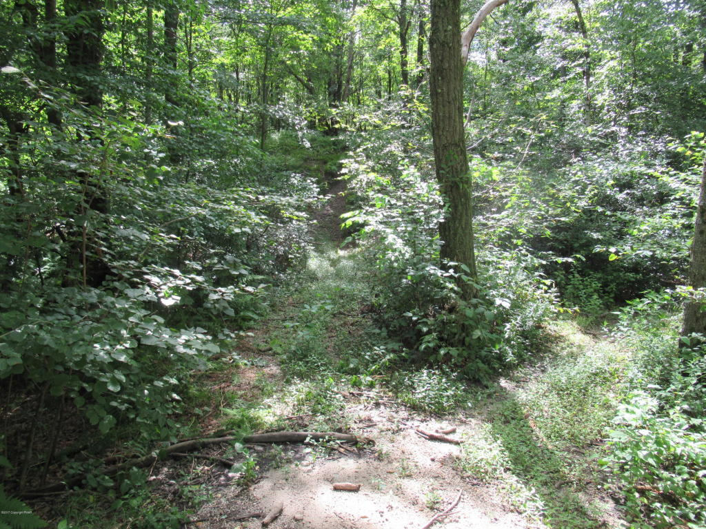 Stoney Lonesome Rd, Summit Hill, PA 18250