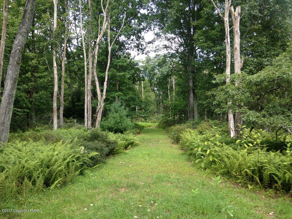 Lower Seese Hill Rd T 579 1, Canadensis, PA 18325