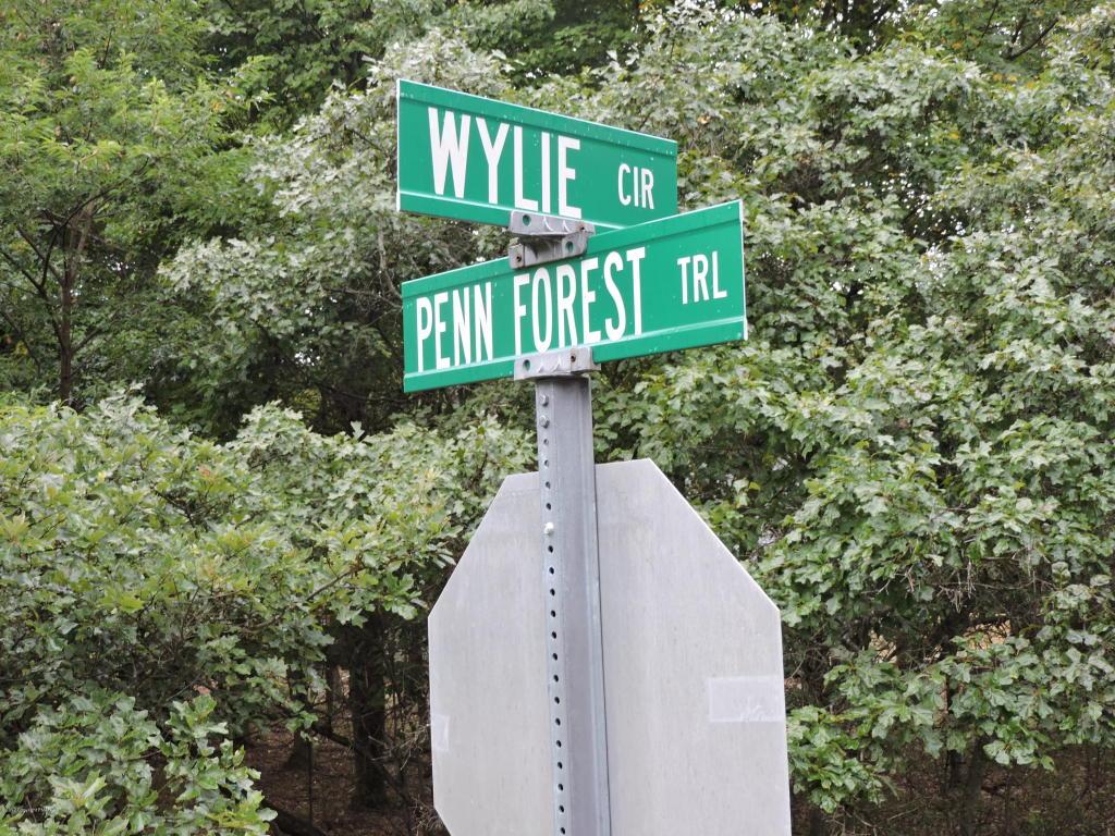54 Wylie Cir, Albrightsville, PA 18210