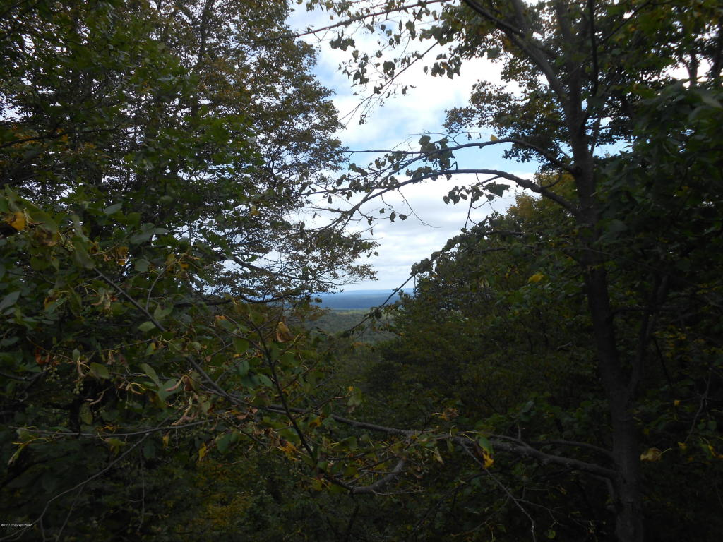 Lot 36 Lake In The Clouds Rd, Canadensis, PA 18325