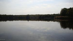 164 Lake In The Clouds Rd, Canadensis, PA 18325