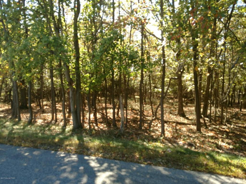 Lot 1202 Sioux Dr, Albrightsville, PA 18210