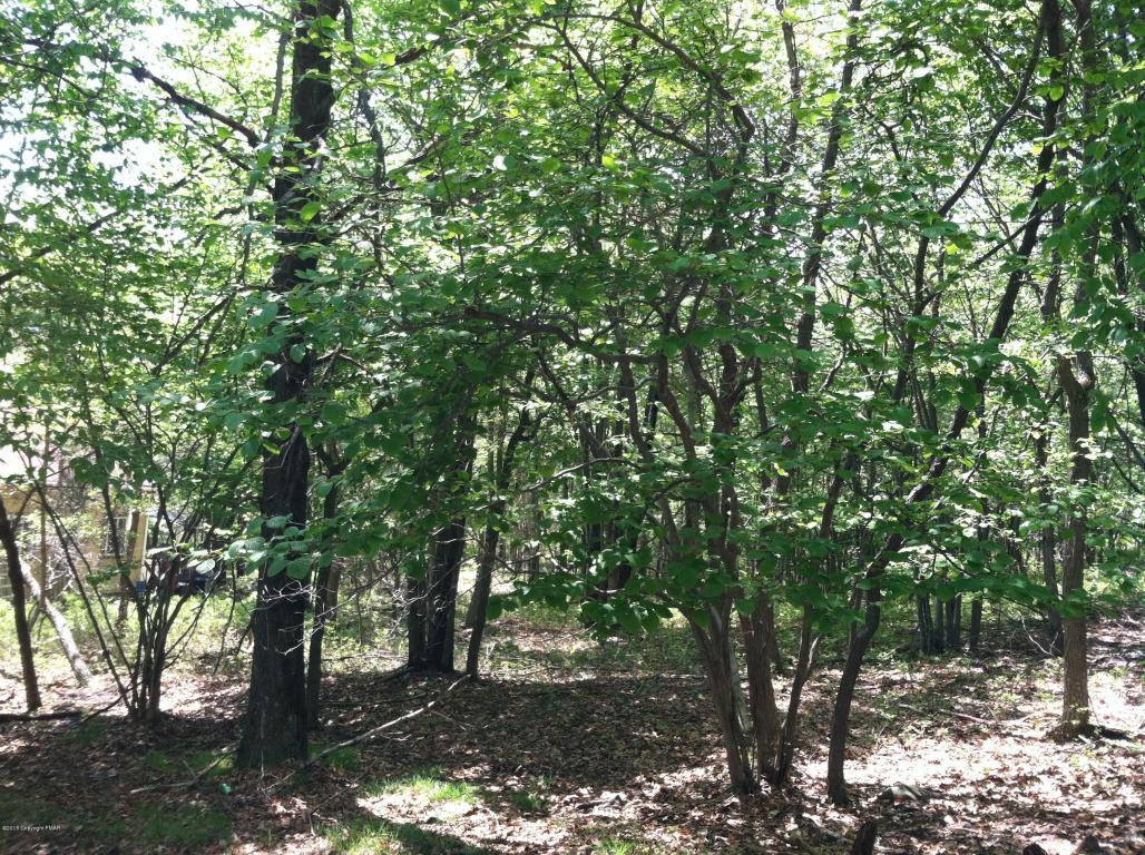 Lot 41/6 Woodland Pl, Blakeslee, PA 18610