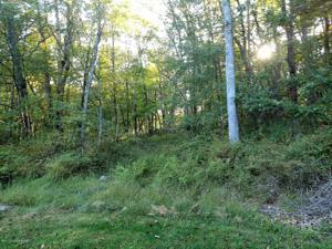 5311 Delia Ter, East Stroudsburg, PA 18301