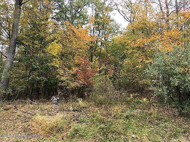 144 Saddle Creek Dr, Upper Mt. Bethel, PA 18343