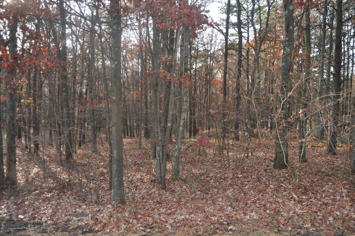Lot A164 Woodside Drive, Jim Thorpe, PA 18229