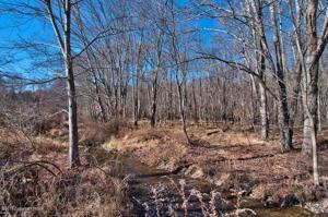 148 Schoonover Ln, East Stroudsburg, PA 18301