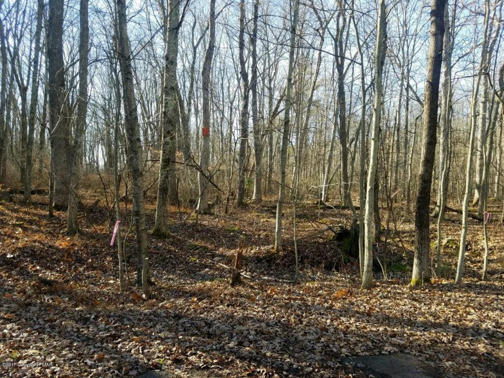 Lot 328 Horseshoe Dr., White Haven, PA 18661