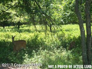 Ev1670 Lucretius Trail, Albrightsville, PA 18210