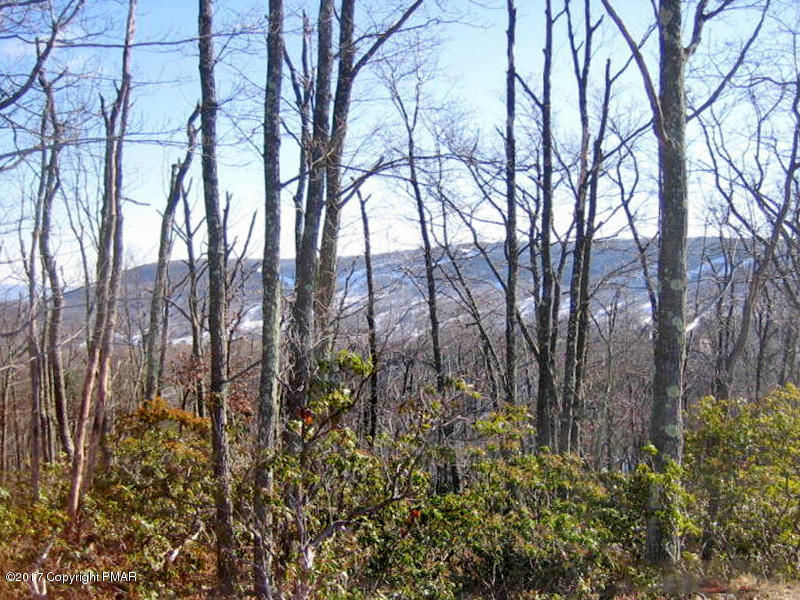 23 Camelback Dr, Tannersville, PA 18372