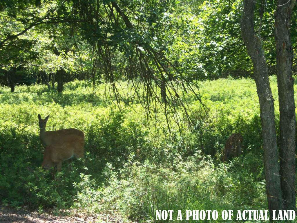 Lii514 Sassafrass Rd, Albrightsville, PA 18210
