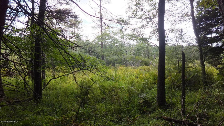 5871 Lower Deer Lake Ct, Long Pond, PA 18334