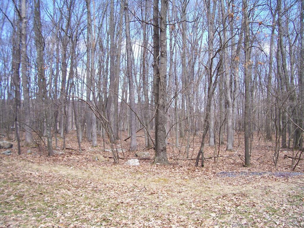 Lot 005 Deer Cross Rd., White Haven, PA 18661