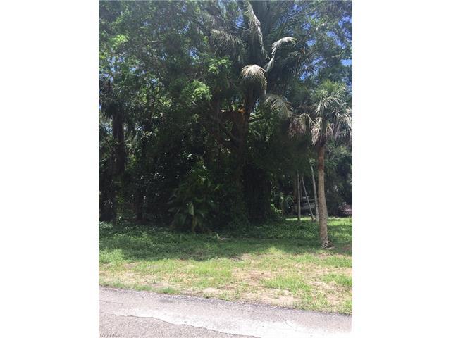 10010 Carolina St, Bonita Springs, FL 34135
