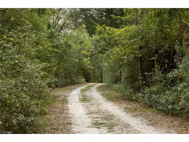 1593 Se County Road 340, Mayo, FL 32066