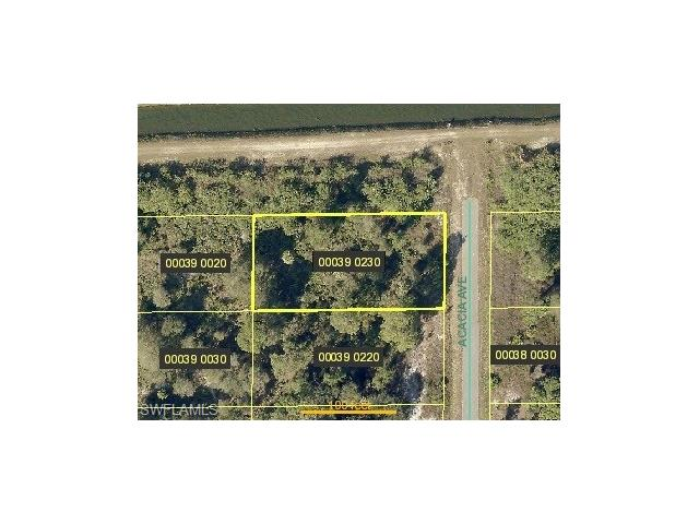1521 Acacia Ave, Lehigh Acres, FL 33972